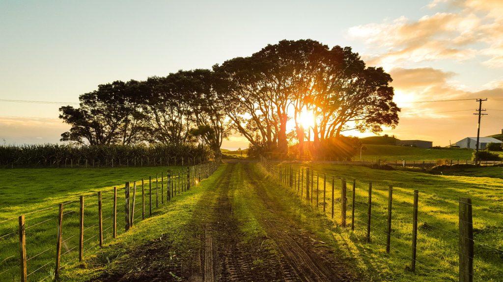 Datenschutz Landwirtschaft